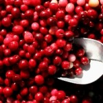 Houston OBGYN | Cranberries